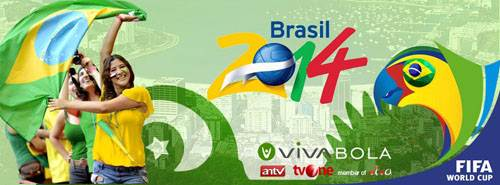 viva1-Optimized